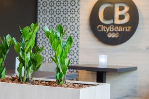 City2Beach Hotel, Hotely  Vlissingen - big - 45