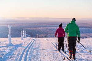 Kakslauttanen Arctic Resort (32 of 123)