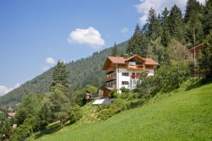 Appartements Haus Pichler - AbcAlberghi.com
