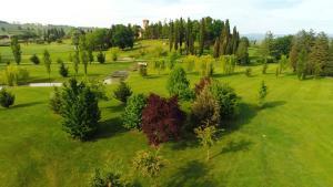 Castello di Spessa (27 of 84)