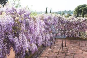 Villa Loggio Winery and Boutique Hotel, Hotels  Cortona - big - 40
