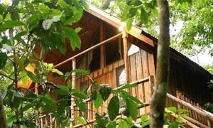 Отель Bayrams Tree Houses, Олимпос