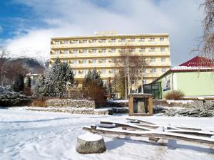 Hotel Palace - Vysoké Tatry