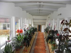 Hotel-Gasthof Stoff, Hotel  Wolfsberg - big - 38
