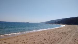A Pasos de la Playa, Apartmanok  Papudo - big - 18