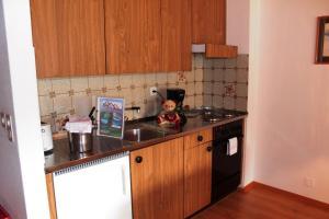 Appartements Monte Rosa, Apartmány  Täsch - big - 9