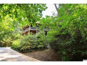 Townsend Tree House - Таунсенд