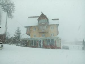 Pensiunea Gaby, Guest houses  Dîmbovicioara - big - 72