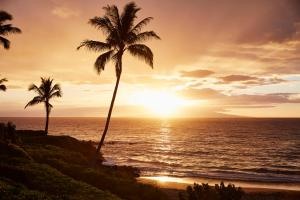 Four Seasons Resort Maui at Wailea (33 of 66)