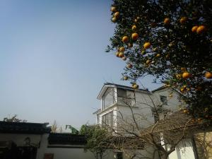 Pure-Land Villa, Privatzimmer  Suzhou - big - 45