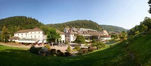 Hotel Therme Bad Teinach - Gültlingen