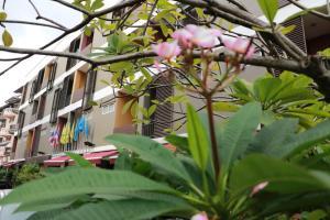 Namnon Place - Ban Sai Ma