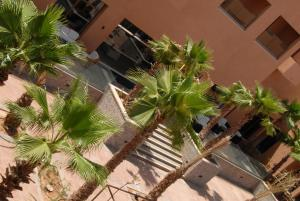 Oasis Palm Hotel, Hotely  Guelmim - big - 29