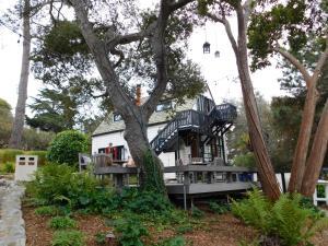 Forest Lodge, Chaty  Carmel - big - 39