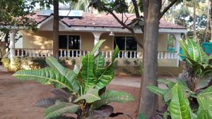 Hill Top Goa Lodge