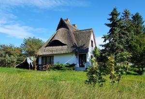 Ferienwohnung im Hochland - Hiddensee