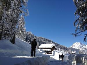 Alpin Park, Panziók  Sappada - big - 39