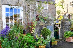 Stable Cottage BnB