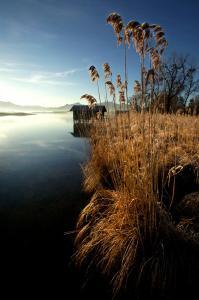Zum Fischer am See, Penzióny  Prien am Chiemsee - big - 8