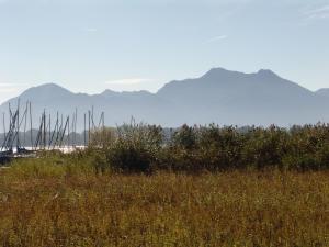 Zum Fischer am See, Penzióny  Prien am Chiemsee - big - 6