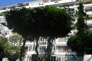 Apartments Milena, Apartmány  Soči - big - 14