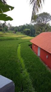 obrázek - Lotus Guesthouse