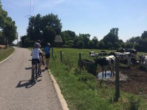 Hoeve Espewey, Farmy  Hombourg - big - 20