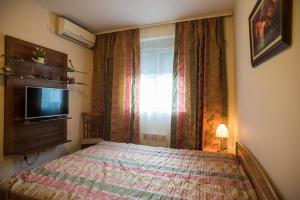 Apartment Lazareva, Apartments  Petrovac na Moru - big - 14