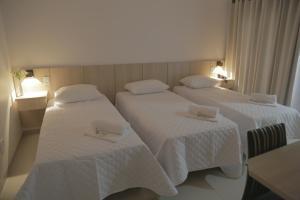 Hotel San Gennaro, Szállodák  Santa Fé do Sul - big - 38