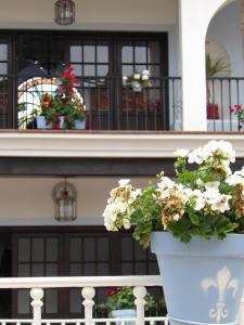 Hotel Palacio Doñana (28 of 47)