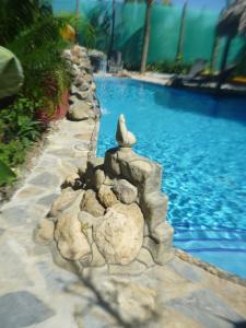 Villa Pelicano, Bed & Breakfasts  Las Tablas - big - 18