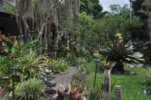 Talamanca Reserve, Отели  Rivas - big - 73