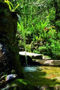 Belmond Sanctuary Lodge (7 of 38)