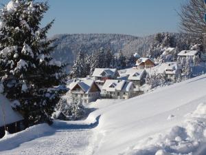 Ferienwohnung Bergahorn - Apartment - Todtnauberg