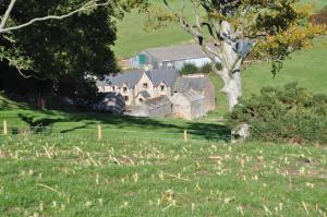 Coombe Farm, Отели типа «постель и завтрак»  Линтон - big - 15