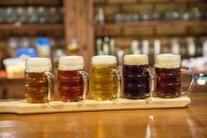 Penzion Harley Pub, Penzióny  Otrokovice - big - 11