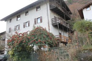 obrázek - Casa Andela