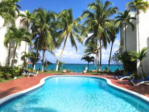 Oceanfront one bedroom apartment - St Mary