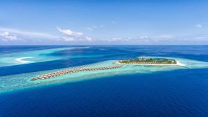 Hurawalhi Maldives (11 of 49)