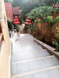 Komodo Lodge, Homestays  Labuan Bajo - big - 27
