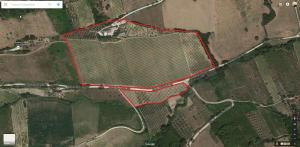 Agriturismo Acquarello, Venkovské domy  Lapedona - big - 65