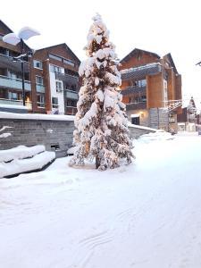 Apartment Levin Stara 2 - Levi