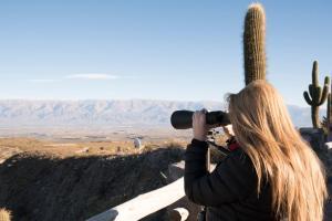 Observatorio Ampimpa, Penzióny  Amaichá del Valle - big - 19
