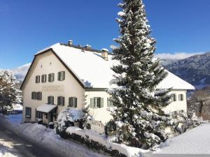 Herrenhaus Greier - Apartment - Telfes im Stubai