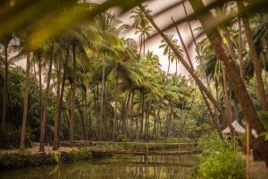 Krishna Paradise Beach Resort, Campeggi di lusso  Cola - big - 77