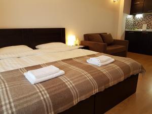 Gudauri Luxe Apartment, Apartmanok  Gudauri - big - 45