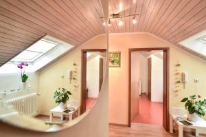 Appartement/Ferienwohnung - Dettingen an der Erms