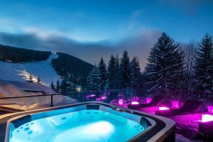 Harrachov Hotels