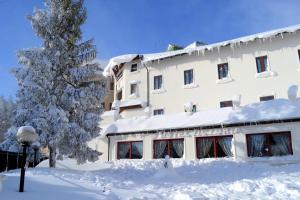 Hotel Victoria, Hotels  Rivisondoli - big - 15