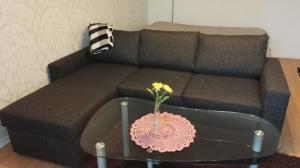 Niskalankatu Apartment - Kuusankoski